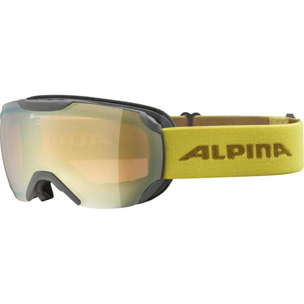 Sport Alpina Erwachsene Skibrille Ski Brille Scarabeo Black Matt Hm Gold Schneebrillen Escxtra Com